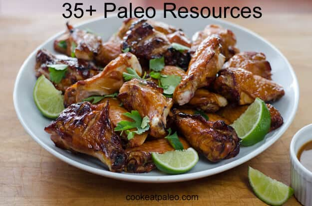 35+ Paleo Resources
