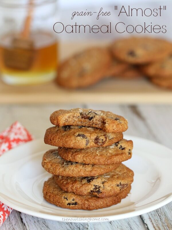 Almost Oatmeal Cookies - from the cookbook Everyday Grain-Free Baking | Easy Paleo Cookie Recipes for Holiday Baking