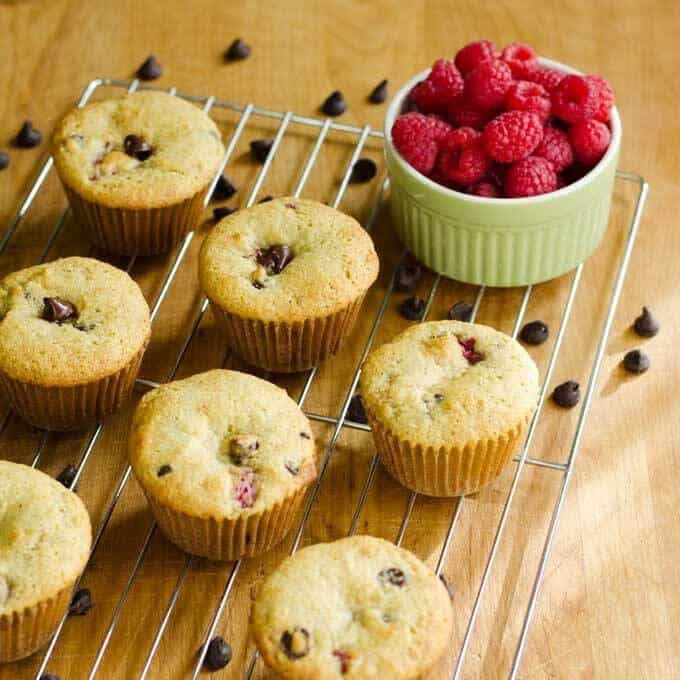 Raspberry Chocolate Chip Muffins - Paleo Summer Berry Recipes