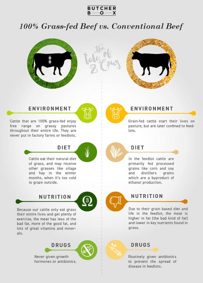 Grass-Fed Beef vs. Grain Fed Beef