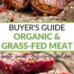 Buyer's guide organic & grass-fed meat - best meat delivery online!