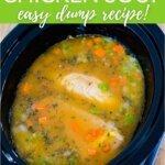 Crockpot chicken soup - easy dump recipe!