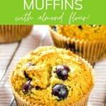 Gluten free blueberry muffins with almond flour!