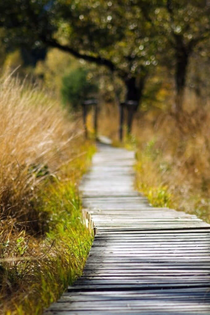 Walking outdoors for self-care