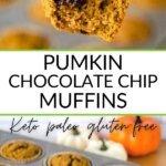 Pumpkin chocolate chip muffins keto paleo gluten-free